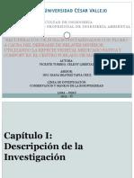 ANTEPROYECTO - EIA.pptx