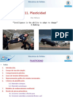 T11-Plasticidad