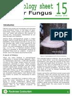 Rockrose-Ethnobiology Sheet 15 Tinder Fungus