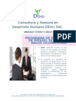 programa  VYP SAC.docx