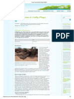 Check Dams & Gully Plugs _ SSWM