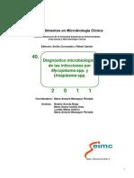 seimc-procedimientomicrobiologia40