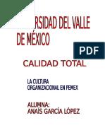 La Cultura Organizacional en Pemex