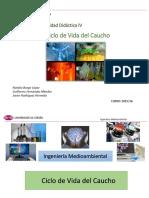 E4_UDIV.15-16 Ciclo caucho.pdf