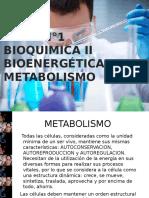 Bioquimica II, bioenergetica y metabolismo