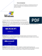 Tipos de Windows