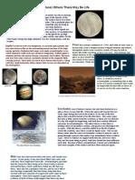 Hickey Shaw Rouda Astrobiology