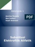 ELEKTROFILIK ALIFATIK
