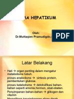 Koma-Hepatikum