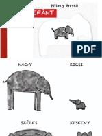Pittau & Gervais - Az elefánt