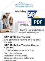 Best SAP SD online training in Singapore | SAP SD online training classes