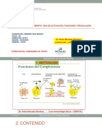 COMPLEMENTO MODELO (1).pdf