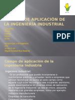 1.6 Campos de Aplicación de La Ingeniería Industrial (2)