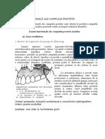 Zonele Functionale Ale Campului Protetic