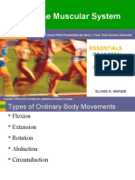 Anatomy Muscular System Body Movement