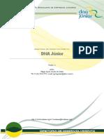 Como criar uma Empresa Júnior (DNA Jr)