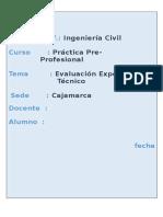 Informe Pre Profesional