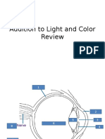 addition to light and color review
