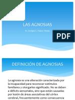 LAS AGNOSIAS.pdf