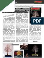 Artigo Bonsai de Jaume canals Março 2010