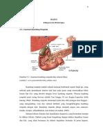 Chapter II Anatomi Duktus Billiaris