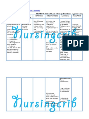 benign prostatic hyperplasia pathophysiology nursing