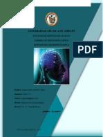 Portafolio Neuropsicología