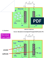 m 06 p 03 Microbial Fuelcells