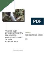 Anteproyecto Analisis de La Situacion Ambiental de Montefiore