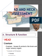 Head and Neck Assessment