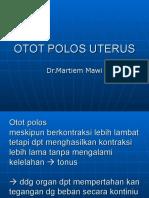 Otot Polos UTERUS Baru