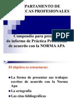 Norma_APA_II_2008