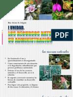 I UNIDAD - LOS RECURSOS NATURALES Y SU ADMINISTRACIÓN