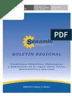 Boletin Senamhi-Junin DR11