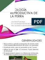 1. Fisiologia reproductiva de la Perra.pdf