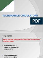 Tulburarile_circulatorii