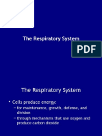 sistem respirasi uniba.pptx