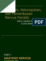 Anatomi, Kelumpuhan, Pemeriksaan Nervus Facialis