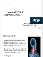 inflamacion como patologia