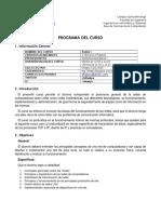programa Redes 1.pdf