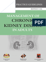 Kidney 01
