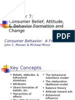 7) Consumer Belief and Attitude