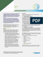 Petroleum & Petrochemical Economics