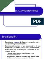 Sociedad - Status & Rol