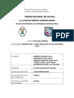 Informe - Caracterización de Lago Yarinacocha