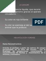 hematologiaforense-110504203928-phpapp01