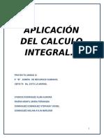Aplicación Del Calculo Integral