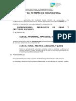 ANEXO 02 - FORMATO DE CONVOCATORIA.doc