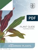 Catalog Plante Tropica