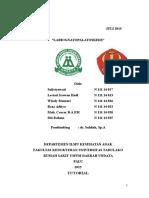 1. Labiopalatognatoskisis- Sulistyawati N 111 14 017
